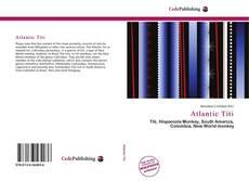 Borítókép a  Atlantic Titi - hoz