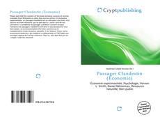 Bookcover of Passager Clandestin (Économie)