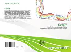 Bookcover of Lavanify