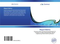 Bookcover of Miguel Molina