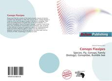 Bookcover of Conops Flavipes