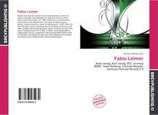 Bookcover of Fabio Leimer