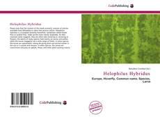 Portada del libro de Helophilus Hybridus
