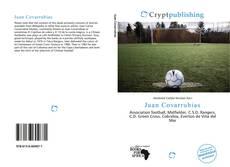 Bookcover of Juan Covarrubias