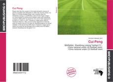 Cui Peng kitap kapağı