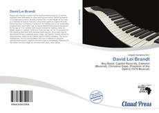 David Lei Brandt的封面