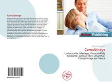 Bookcover of Concubinage