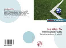 Portada del libro de Luis Gabriel Rey