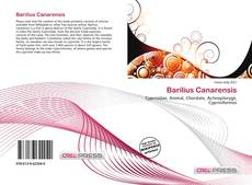 Bookcover of Barilius Canarensis