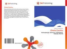 Buchcover von Chela Cachiu