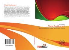 Buchcover von Chela Dadiburjori