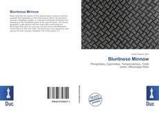 Borítókép a  Bluntnose Minnow - hoz