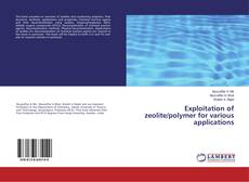 Bookcover of Exploitation of zeolite/polymer for various applications