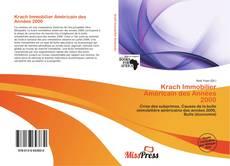 Buchcover von Krach Immobilier Américain des Années 2000