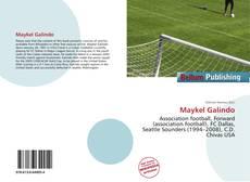 Portada del libro de Maykel Galindo