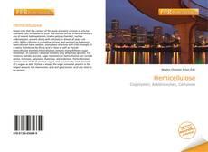 Capa do livro de Hemicellulose