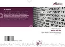 Bookcover of Acceleware