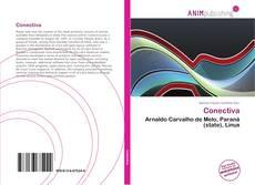 Capa do livro de Conectiva