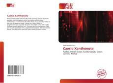 Caesio Xanthonota的封面