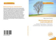 Bookcover of Methodological individualism