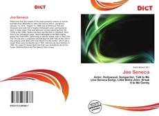Bookcover of Joe Seneca