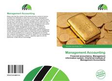 Bookcover of Management Accounting