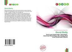 Bookcover of David Reilly