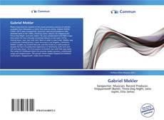 Bookcover of Gabriel Mekler
