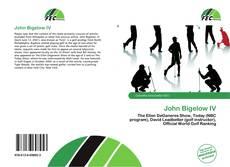 Couverture de John Bigelow IV