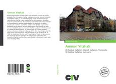 Bookcover of Amnon Yitzhak
