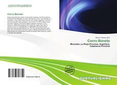 Bookcover of Cerro Bonete