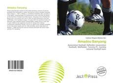 Amadou Sanyang kitap kapağı