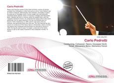 Borítókép a  Carlo Pedrotti - hoz