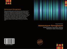 Обложка Astrocaryum ferrugineum