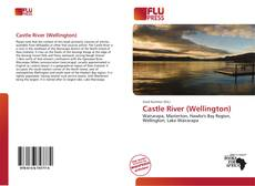 Bookcover of Castle River (Wellington)