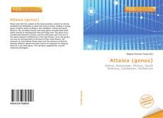 Bookcover of Attalea (genus)