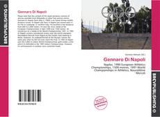 Portada del libro de Gennaro Di Napoli