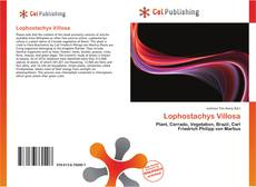 Bookcover of Lophostachys Villosa
