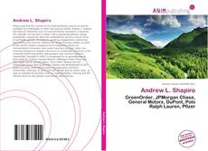 Bookcover of Andrew L. Shapiro