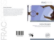 Bookcover of Andrea Meneghin