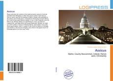 Buchcover von Assicus