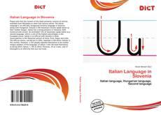 Bookcover of Italian Language in Slovenia