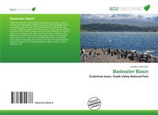 Bookcover of Badwater Basin