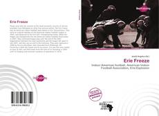 Bookcover of Erie Freeze
