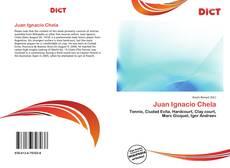 Buchcover von Juan Ignacio Chela