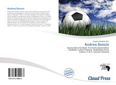 Bookcover of Andrea Soncin