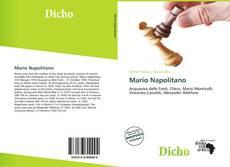 Capa do livro de Mario Napolitano
