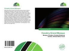 Conakry Grand Mosque kitap kapağı