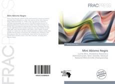 Bookcover of Mini Abismo Negro