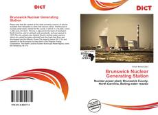 Bookcover of Brunswick Nuclear Generating Station